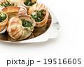 エスカルゴ: Cooked escargot on escargot plate 19516605