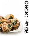 エスカルゴ: Cooked escargot on escargot plate 19516608