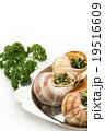エスカルゴ: Cooked escargot on escargot plate 19516609