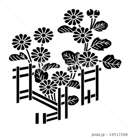 逸見駿河守真正 籬架菊のイラスト素材 [19517268] - PIXTA