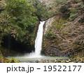 伊豆市浄蓮の滝 19522177
