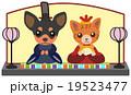 ひな祭り 犬と猫 19523477