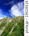 奥穂高岳 19528316