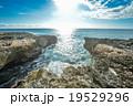 岩場の海 19529296