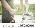 水遊び 19529299