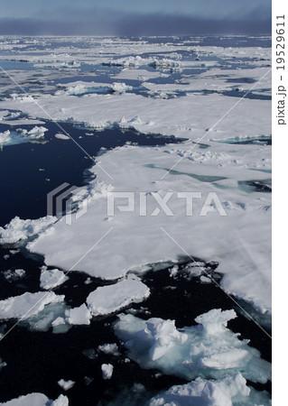 北極海の風景 19529611