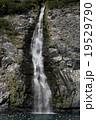 滝 19529790