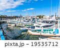 【静岡県】田子の浦港・漁船 19535712