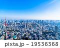 【東京】東京タワーと都市風景 19536368