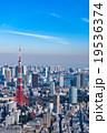 【東京】東京タワーと都市風景 19536374