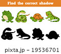 Find the correct shadow (animals) 19536701