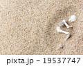 砂漠に埋もれた白骨死体: Skeleton burried in the desert 19537747
