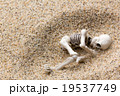 砂浜に埋もれた人骨: Skeleton burried in the beach 19537749