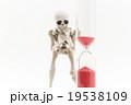 短命にあわてふためくガイコツ:Skeleton on the verge of deat 19538109