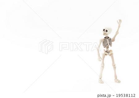 タクシーを呼ぶガイコツ:Skeleton catching a cab 19538112