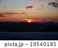 朝日 19540185
