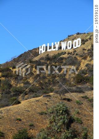 ハリウッドサイン 19559110