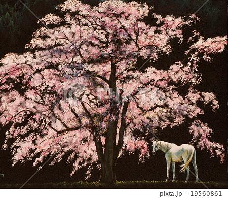 神夢(かむゆめ) 19560861