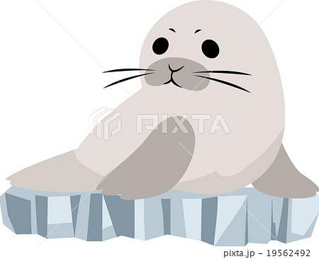 氷上のアザラシのイラスト素材 19562492 Pixta