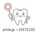 白い歯のキャラクター(まる・正解・OKイメージ) 19572182