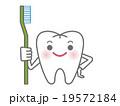 歯ブラシを持つ白い歯のキャラクター 19572184
