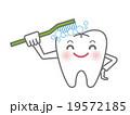 歯ブラシで自分を磨く白い歯のキャラクター 19572185