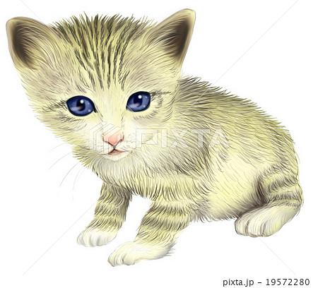 トラ猫の子猫のイラストのイラスト素材 19572280 Pixta