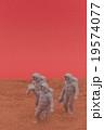 火星探索イメージ: Exploration on Mars 19574077