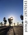 LAのビーチ 19576543