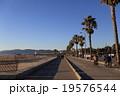 LAのビーチ 19576544