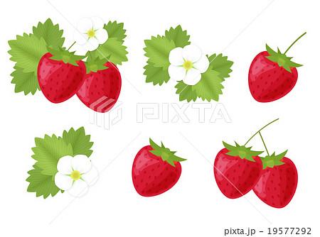 苺 いちご 花 葉っぱのイラストカット セット素材 春素材 背景透過pngのイラスト素材