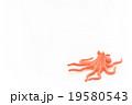 おもちゃのタコ: Toy Octopus 19580543