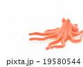おもちゃのタコ: Toy Octopus 19580544