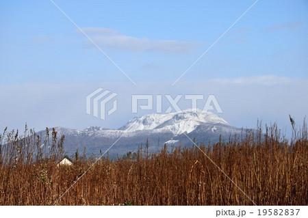 冠雪した有珠山 19582837