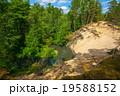 森林 林 森の写真 19588152