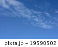 青空 19590502