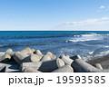 海 テトラポット 消波ブロックの写真 19593585