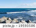 海 テトラポット 消波ブロックの写真 19593586