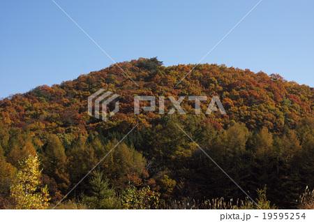 紅葉の山 19595254