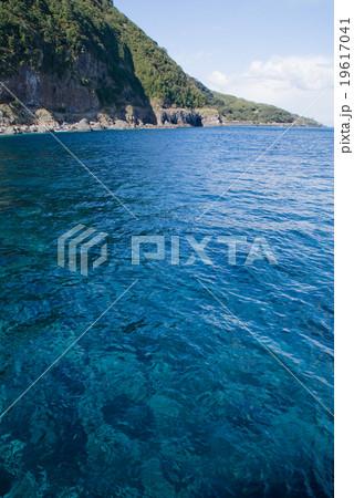 伊豆大島の青い海 19617041