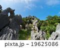 沖縄県 大石林山 19625086