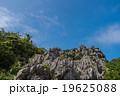 沖縄県 大石林山 19625088