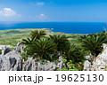 沖縄県 大石林山から見る辺戸岬 19625130