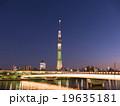 東京スカイツリー ライトアップ シャンパンツリー  19635181
