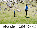 桜 公園 親子の写真 19640448