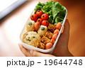 お弁当箱 キャラ弁 可愛いお弁当 cute lunchbox 19644748