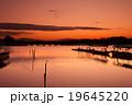 京都市右京区嵐山の渡月橋を早朝に撮影したもの 19645220