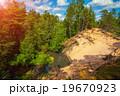 森林 林 森の写真 19670923