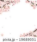 桜 花 素材のイラスト 19689031