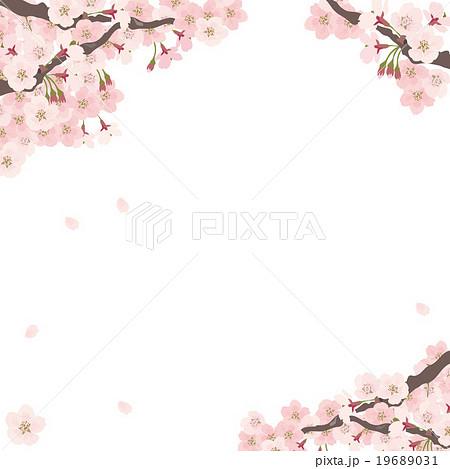 桜 素材 イラスト 19689031